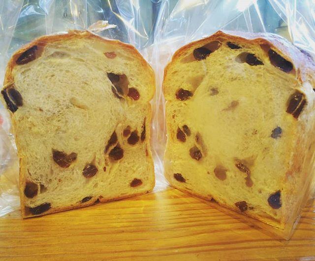 レーズンたっぷり「ぶどう食パン」本日残りわずかとなりました。レーズンお好きな方に食べて頂きたい食パンです本日も皆様のご来店お待ちしております。#平野区 #パン屋 #リノベーション #ぶどう食パン #レーズン #レーズン食パン